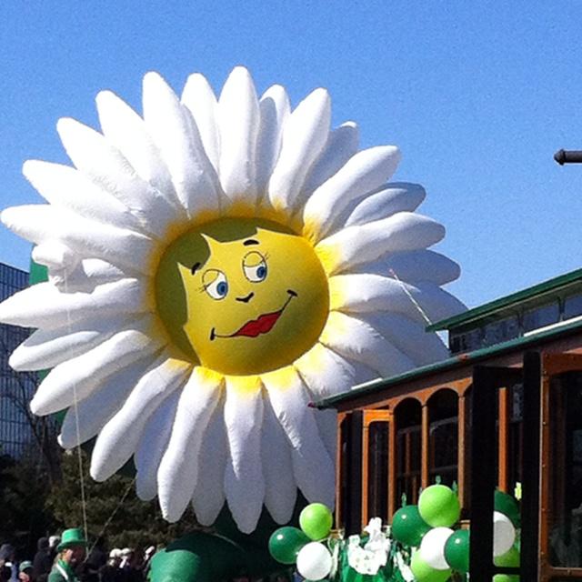 Flower Ass Parade 113