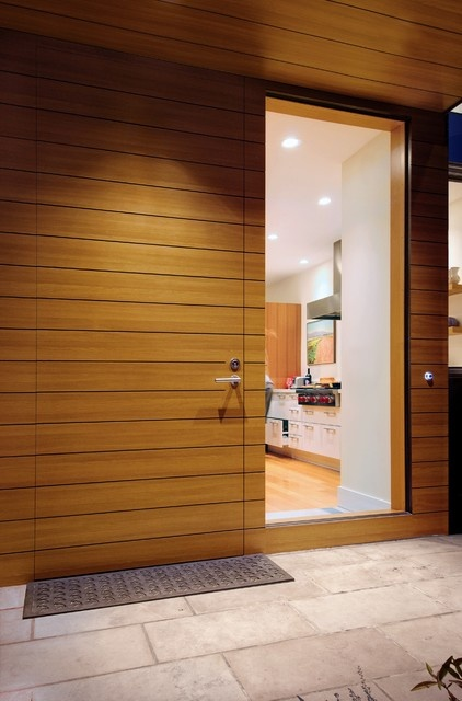 Contemporary wood door
