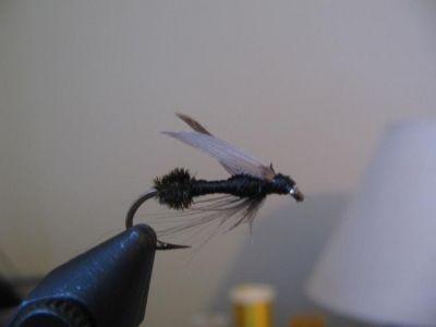 FlyTyingForum.com - Wet fly Ant