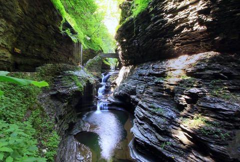 Seneca Wine Trail:  Watkins Glen, New York
