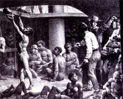 Slaves in the Middle Passage | Image of slaves in the hold of a slave ship