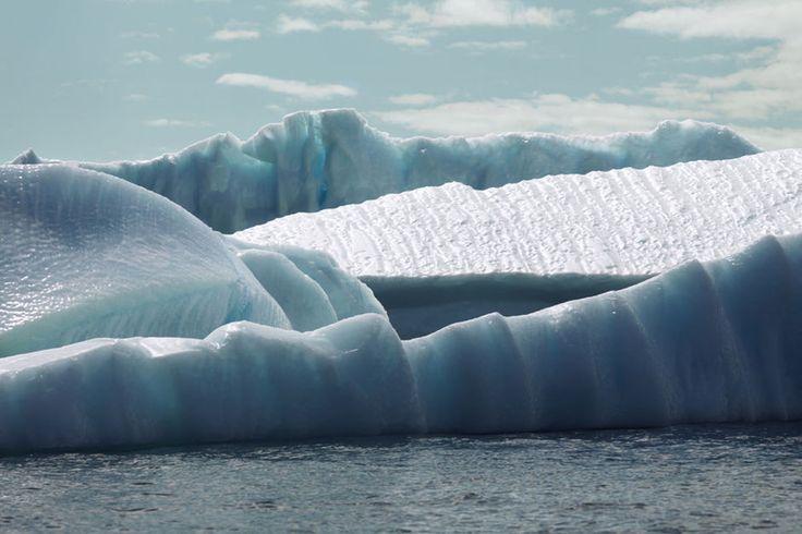 Onderzoekers van de universiteit van Alaska en Texas plaatsten onderwatermicrofoons bij de kust van de Alaska en deden ook een laboratoriume...