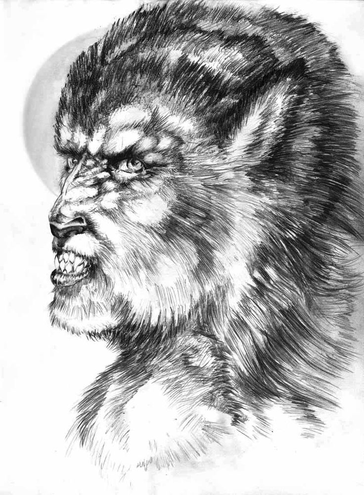 Ms de 25 ideas increbles sobre Dibujos hombre lobo en Pinterest