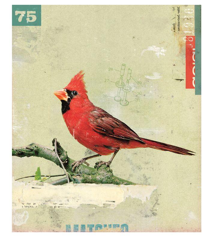 'Bird No.6' by Kareem Rizk (2008). You can buy this piece at www.artrebels.com #artrebels #art #digitalprints