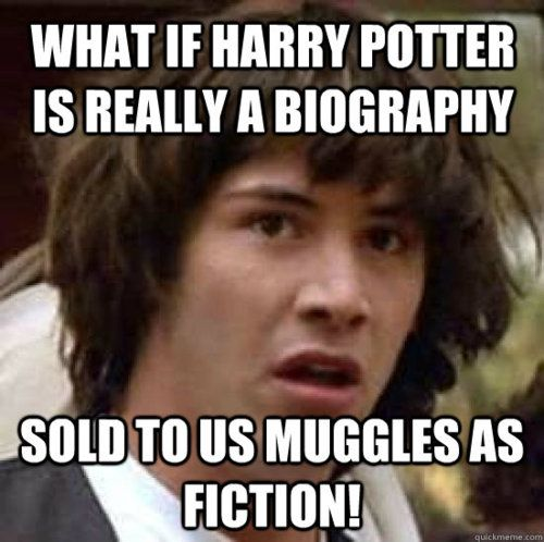 what if harry potter is really a biography, sold to us muggles as fiction! lol: