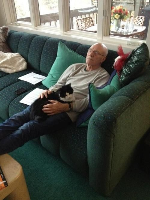 This is Bella, a cat that Patrick Stewart adopted after it was found without owner on the set of Star Trek: The Next Generation. // click through for 21 other reasons to love Patrick Stewart, in case you need any more.