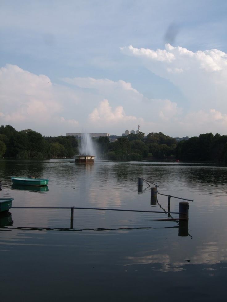 Zoo lake .