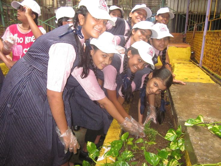 Tree Plantation programme at school, for the awareness of Green India.