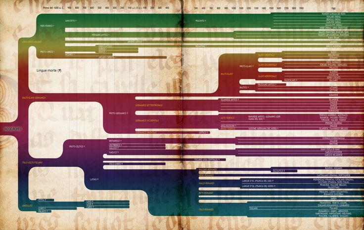 16 cose che (forse) non sai sulle lingue e il loro apprendimento - Focus.it