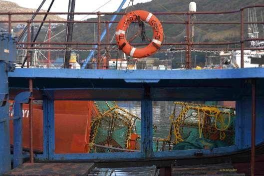 An established tuna, snoek and crayfish industry