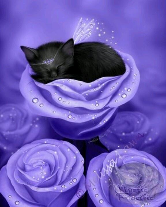 Purple sleep...