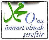 İslamda.org