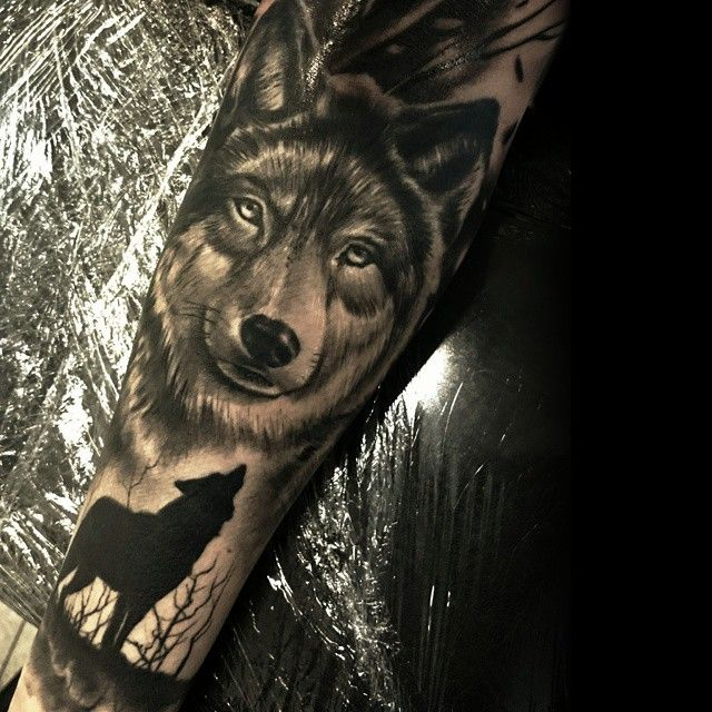 #wolf #wolftattoo #bng #blackandgrey #blackandgreytattoos #tattoo #tattooed #ink #inked #realistic #realistictattoo