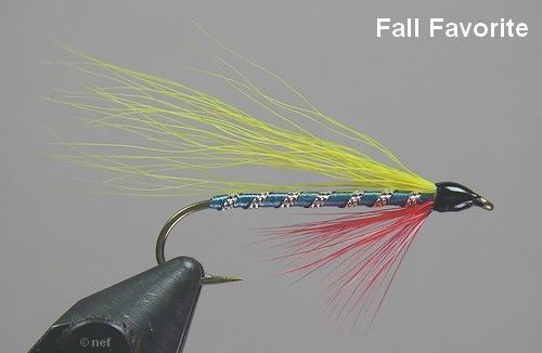 Normand Frechette uploaded this image to 'Fly Photos/Streamers'.  See the album on Photobucket.