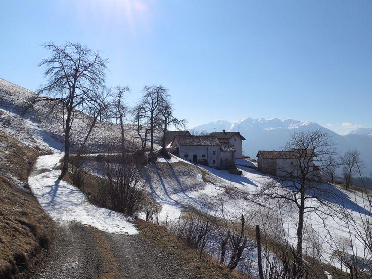 Uerpa, Lauco, Carnia, Alpi, Alps, Friuli Venezia Giulia, Italy