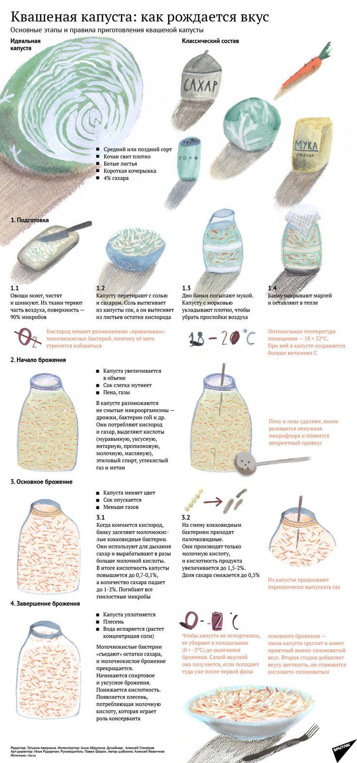 Квашеная капуста: как рождается вкус