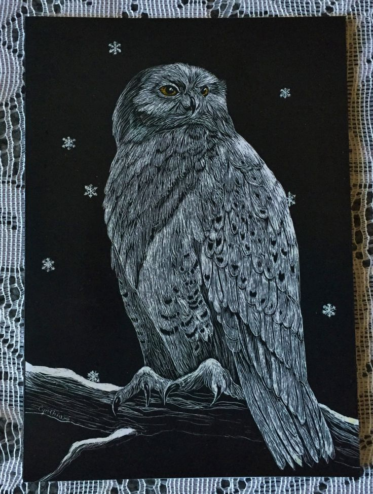 Snowy Owl Scratchboard Greeting Card by specialorderart on Etsy