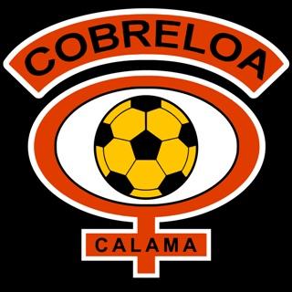 Club de Deportes Cobreloa - Chile