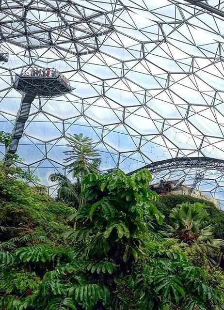 18 best gardens botanical images on pinterest eden project rainforest biome the eden project cornwall publicscrutiny Image collections