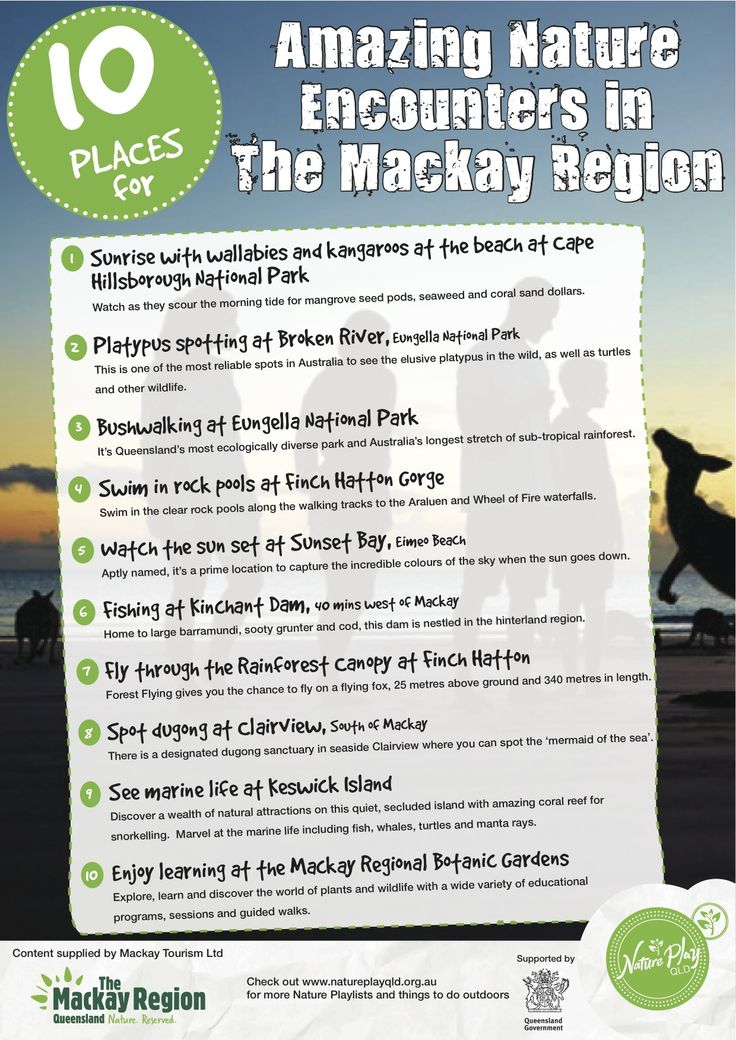 10 Places for Amazing Encounters in the Mackay Region.  Nature Play QLD's Nature Playlist.