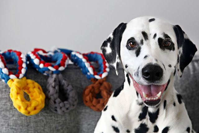 DIY Olympic-Inspired Dog Tug Toy Ideas - Colourful, Patriotic, and More!
