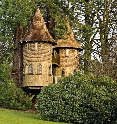 Cool castle tree house