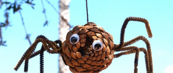 Pine come spiders. We will have to make a couple for uncle Richard too :-P