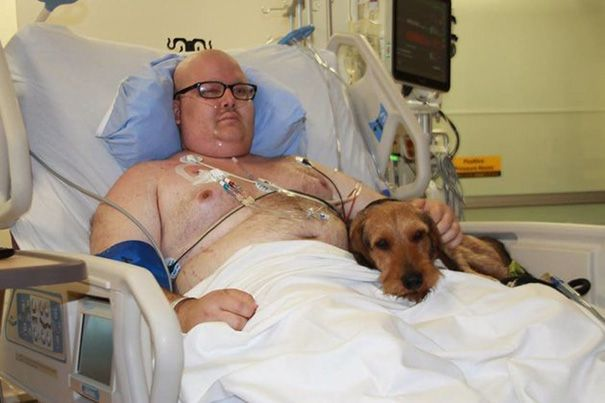 Hospital Lets Pets Visit Their Sick Humans To Make Them Feel Better