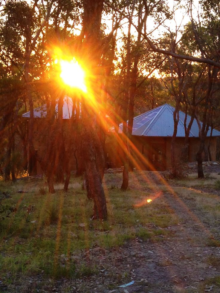 Bushland Studio at Sunset Nerina Lascelles