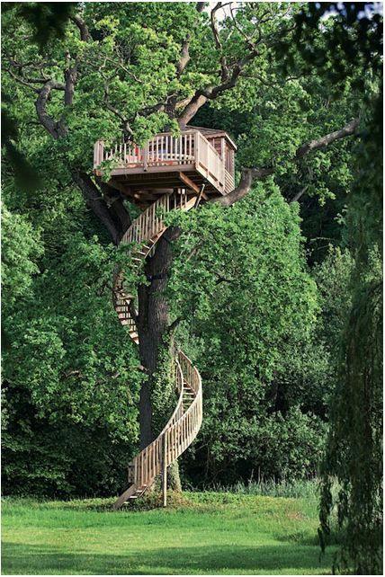 Tall Treehouse With Amazing Spiral Stairs.