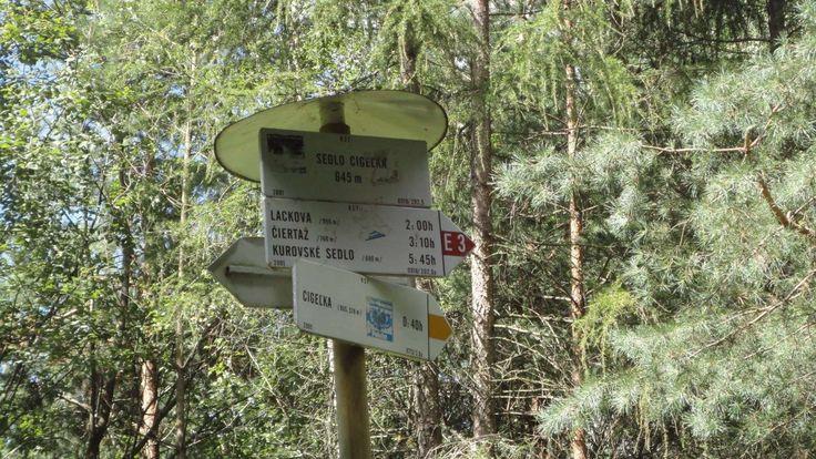 Zdjęcia parków, skansenów i rezerwatów | Wczasy pod gruszą Górskie wycieczki i spacery są lubianą formą rozrywki dla ludzi szukających spokoju: http://www.domkiwbeskidach.pl/noclegi-jaslo.html