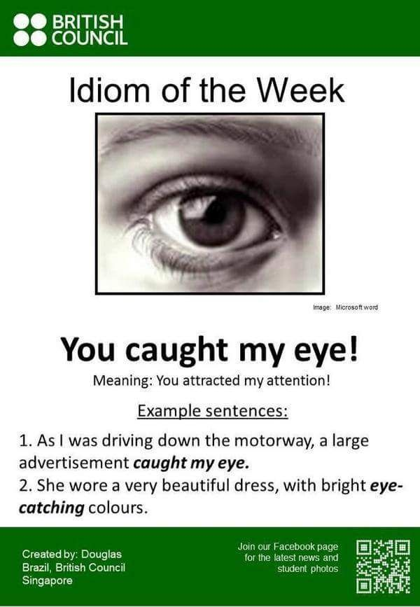 1715 Best Idioms Images On Pinterest English Grammar English