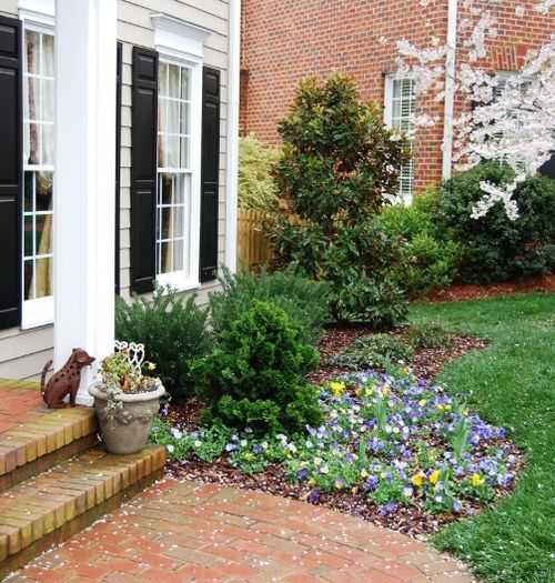 17 Best Images About Landscaping -Foundation On Pinterest