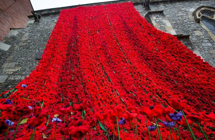 Crocheted poppy display at St Lawrence Chapel in Warminster, Wiltshire - just incredible!