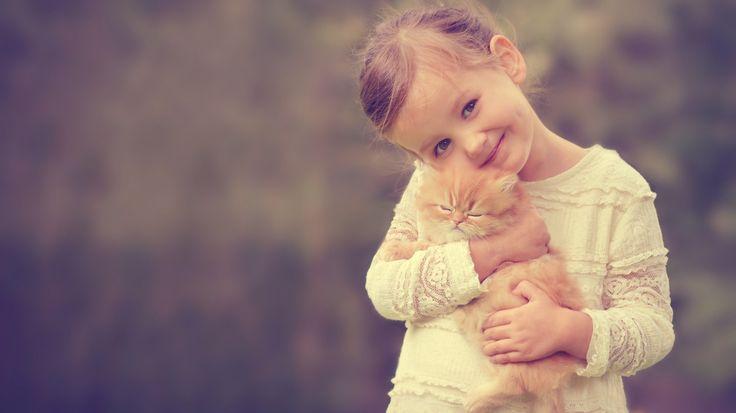 Скачать обои девочка, рыжий котёнок, котёнок, раздел разное в разрешении 1366x768