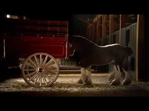 My favorite!--2006 Super Bowl, Budweiser Clydesdale commercial. This almost makes me cry lol