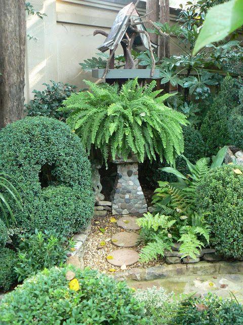 17 best Garten Farne images on Pinterest Ferns, Patio plants - garten mit grasern gestalten