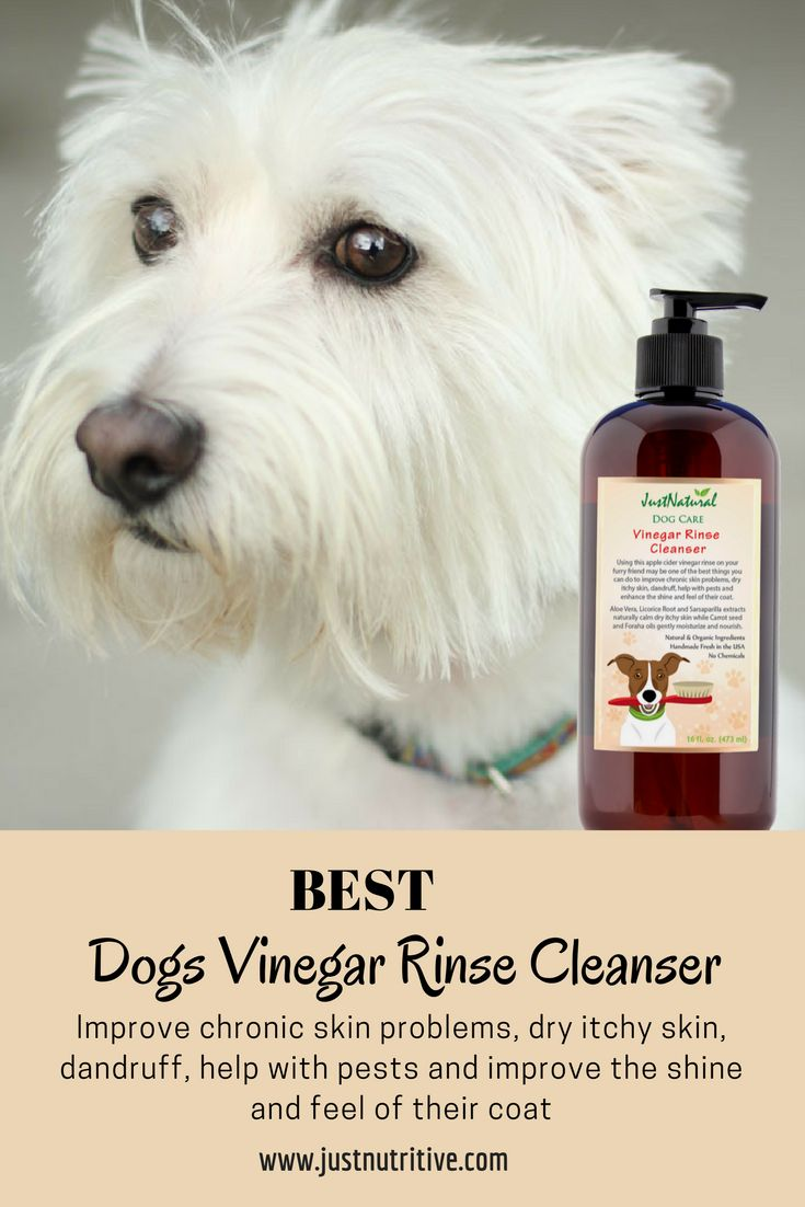 Apple cider vinegar has been used for centuries as a medicinal folk remedy and people are learning today about its dog friendly benefits. Due to its detoxifying properties, another benefit is its effect on a dog's skin and coat since it is anti-bacterial, anti-fungal, and antiseptic. Dogs with red, irritated dry itchy skin caused by allergies and other conditions can get soothing relief.