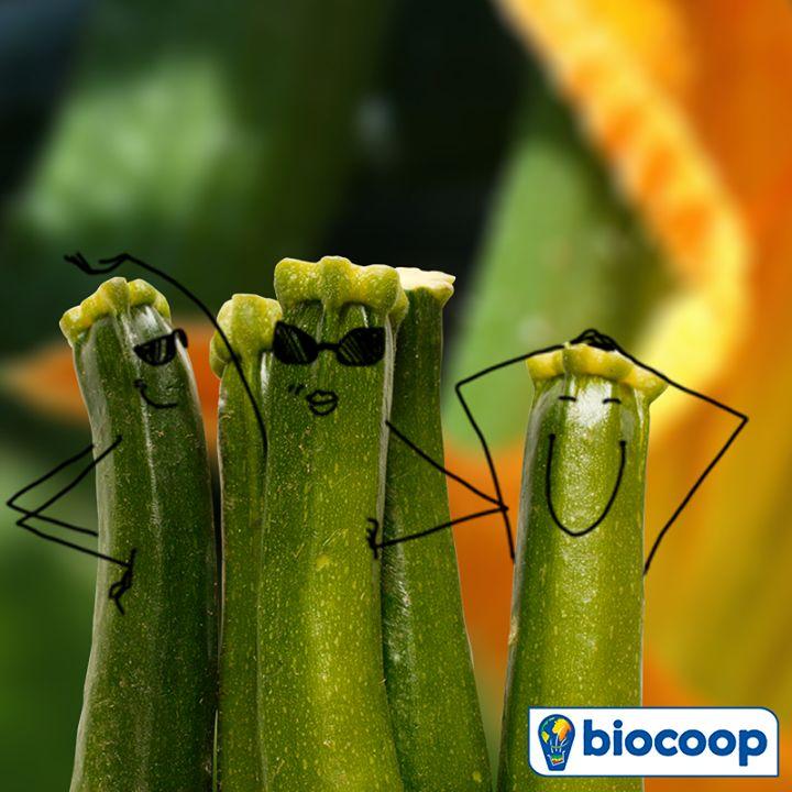 La courgette, c'est notre légume du mois de juillet chez Biocoop !