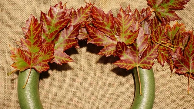 How to wax real leaves, to keep their color. Must collect this week.