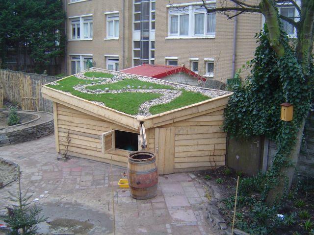 Ook het dak kan groen!