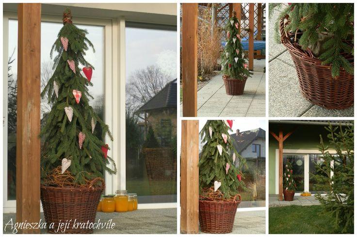 ... šílenství u nás letos spolu s adventem začalo :-) Plánovala jsem letos jeden venkovní stromeček poblíž prosklené části obývacího pokoje...