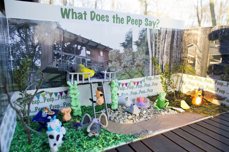 The best Peeps dioramas made by kids