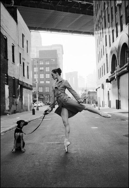dog, city and ballerina
