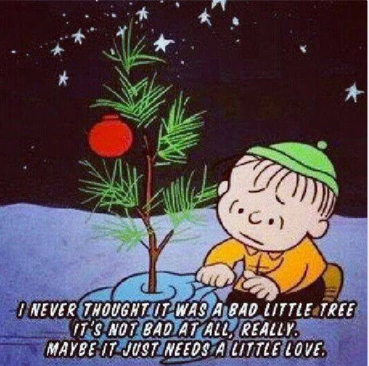 Christmas Tree Quotes: 17 Best Charlie Brown Christmas Quotes On Pinterest