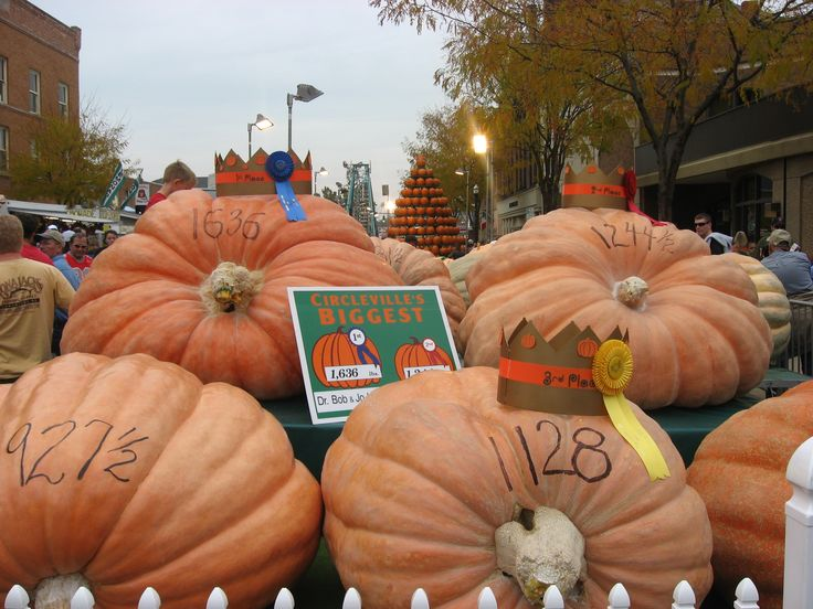The Circleville, Ohio Pumpkin Show | As the sixth-largest festival in the country, the Pumpkin Show has been delighting visitors and locals alike for over 100 years. #fall #autumn #pumpkineverything #festival