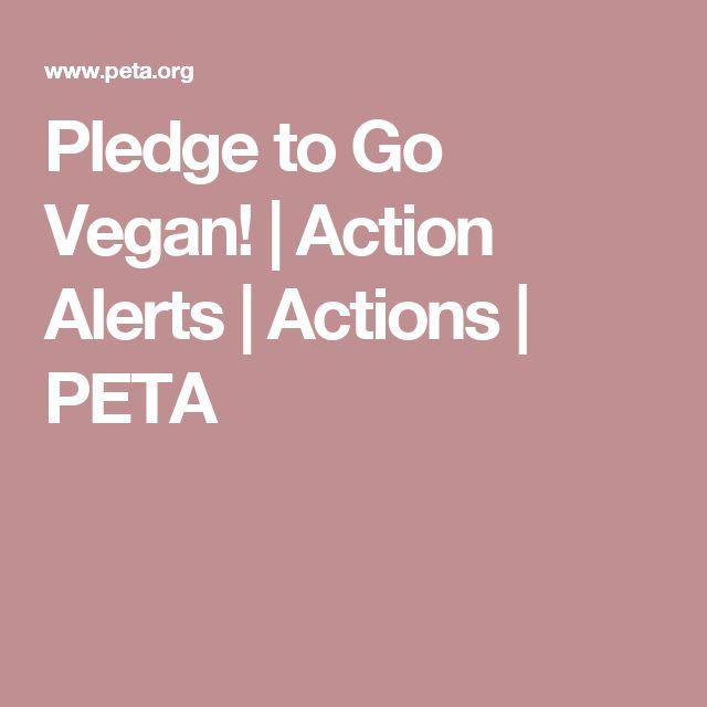 Pledge to Go Vegan! | Action Alerts | Actions | PETA
