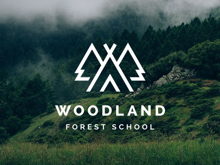Logo for an after school project teaching practical outdoor skills. The client wanted the logo to include a teepee and trees, and liked the idea of having a W included somehow, hence the semi hidde...