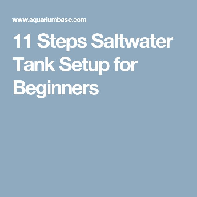 25 best saltwater tank setup ideas on pinterest for Starting a fish tank for beginners