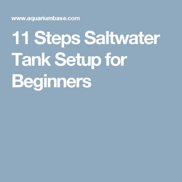 11 Steps Saltwater Tank Setup for Beginners